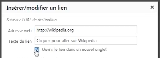 options-lien-wordpress-nouvel-onglet-2