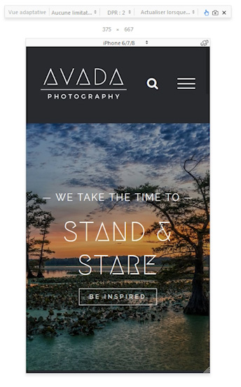 avada-theme-wordpress-responsive